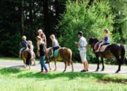 comaine de miaralet paardrijden